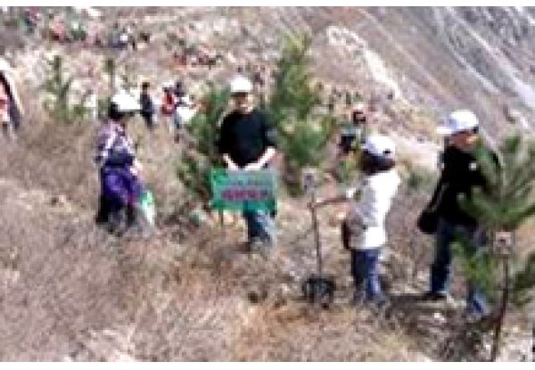 NWDS Tree Planting Activity in Wenchuan